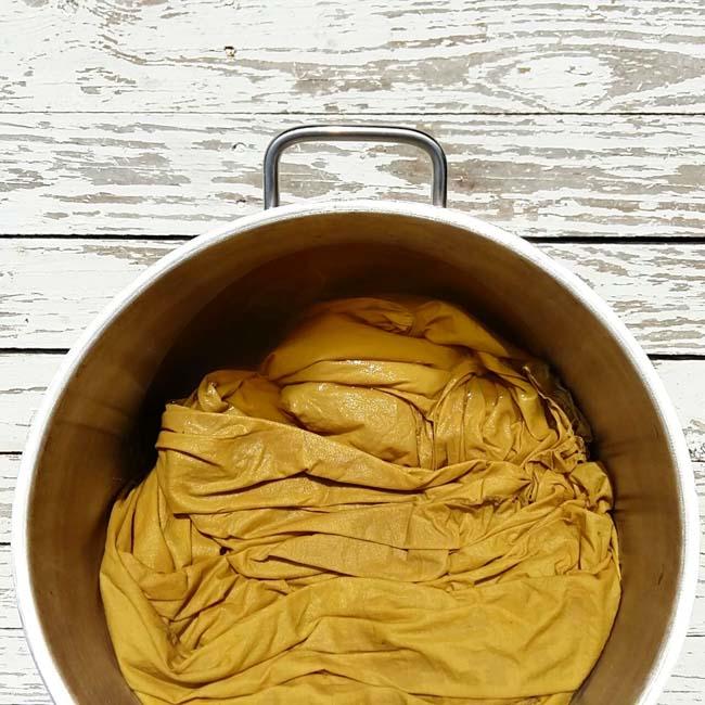Gualda Tintes Naturales _Weld Natural Dyes